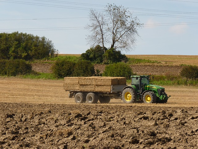 rural loans